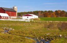 Schnäppchen-Bauernhof kaufen: Die Checklisten fürs perfekte Kaufen, Sanieren (Förderung abkassieren!) und Vererben ( Foto: Shutterstock-chatursunil )